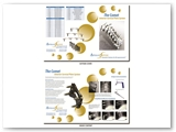 Apollo Spine Corporate Double Sided Brochure