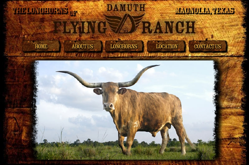 Damuth Flying D Ranch